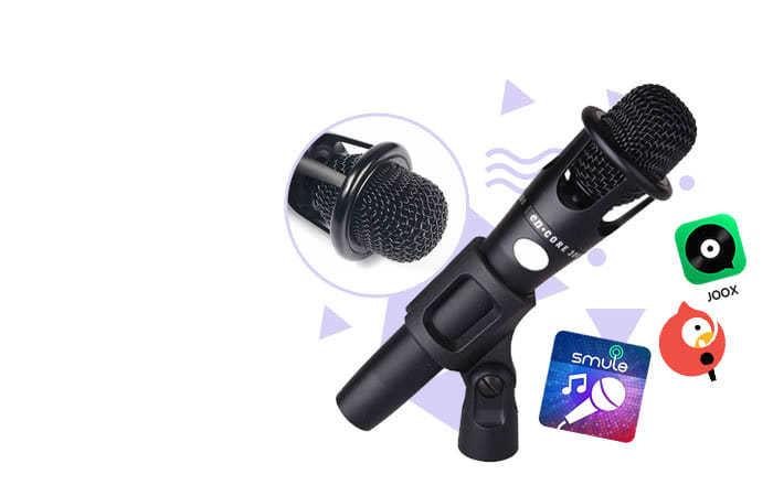 Taffware Mikrofon Condenser Karaoke