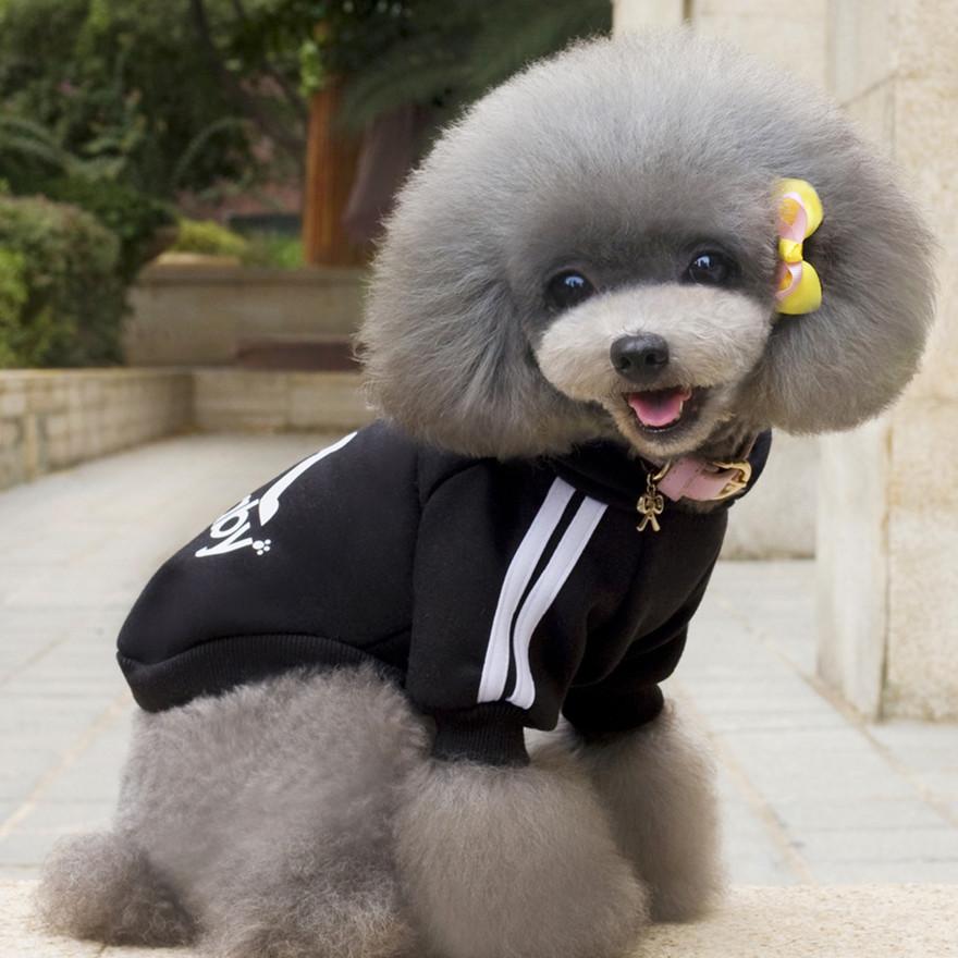 Adidog Baju Jaket Hoodie Anjing Size S Black Jakartanotebook Com