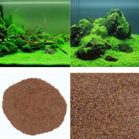 Bibit Rumput Air Dekorasi Aquarium Landscape Ornament - H0027