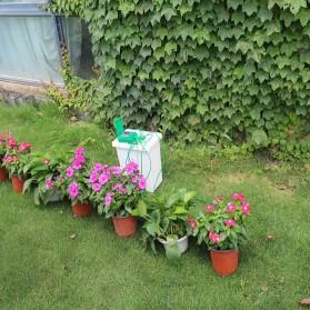 Timer Irigasi Air Tanaman Otomatis Micro Drip Home Watering Kits - Green - 5