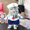 Baju Kucing Cat Funny Halloween Cosplay Size L - White