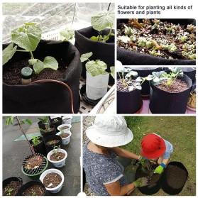 Pot Tanaman Kain Minimalis Jumbo Breathable Plants Growing Aeration Bag - GL7 - Black - 9