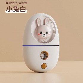 JANCHENG Humidifier Nano Mist Sprayer Facial Steamer Moisturizer Nebulizer 35ml - Q801 - White