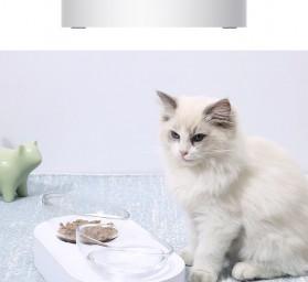 Xiaomi PETKIT Tempat Makan Hewan Peliharaan Kucing Anjing Feeding Dishes Double Bowl - White - 3