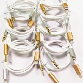 Kabel Lightning ke 3.5mm Headphone for iPhone 7/8/X - Silver - 4