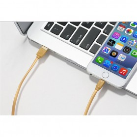 Remax Radiance Lightning Cable for iPhone - RC-041i - Golden - 3