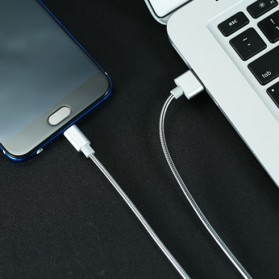 Remax Silver Serpent Kabel Micro USB - RC-080m - Silver - 2