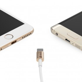 WSKEN 2 in 1 Kabel Charger Lightning & Micro USB Dual Side - Golden - 1