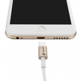 WSKEN 2 in 1 Kabel Charger Lightning & Micro USB Dual Side - Golden - 4