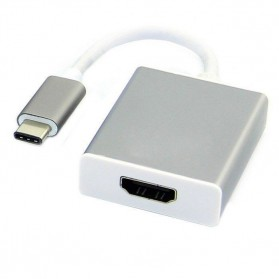 USB 3.1 Type C Male to HDMI Female Adapter Converter - Silver