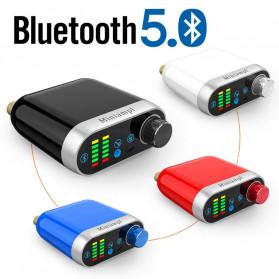 Douk Audio Mini Amplifier HiFi Bluetooth 5.0 Sound Card - TPA3116 - Black - 2