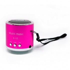 Insert Card Speaker Support MicroSD Card, USB Flash Disk, FM Radio - Z-12 - Rose