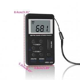 HRD Portable AM/FM Radio Player - HRD-103 - Silver - 4