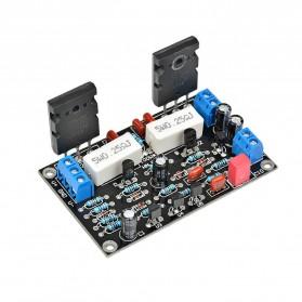 AIYIMA DIY Amplifier Board 100W 2SC5200+2SA1943 - A2D847 - 2