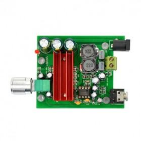 AIYIMA DIY Amplifier Board TPA3116 - A2D743