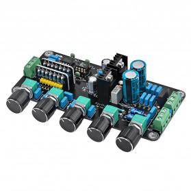 AIYIMA DIY Amplifier Board - B2D039