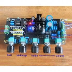 AIYIMA DIY Amplifier Board - B2D039 - 6