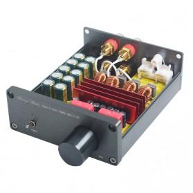 Breeze Audio Class D Amplifier TPA3116 2 x 100W - BA100 - Silver - 2