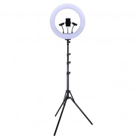 TaffSTUDIO Lampu Halo Ring Light LED Kamera 18 Inch with 3xSmartphone Holder + Tripod - JY-460B - White