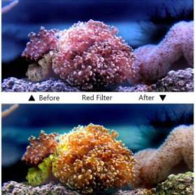 Telesin Lensa Red Diving Filter Lens for GoPro Hero 5/6/7 Case GP-WTP-501 - GP-FLT-502 - Red - 6