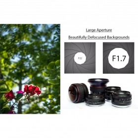 Lensa Kamera MF Manual Fixed Focus 35mm f1.7 for Sony NEX-3 Alpha A5000 A6000 - Black - 9