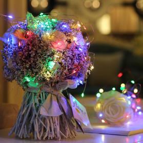ANBLUB Lampu Hias Dekorasi 20 LED 2 Meter - 2G22 - Warm White - 5