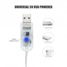 ANBLUB Lampu LED USB Dekorasi Wedding Fairy Light 3x3Meter 300 LED with Remote Control - ANB300 - Warm White - 5