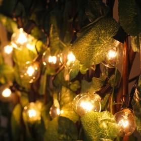 Dongdahua Lampu Hias Dekorasi Ball Fairy Light 7.6M 25 Bulb 3W Warm White - GY25 - Black - 4