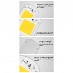 Chip Lampu COB LED Floodlight Spotlight 220V 30W - Cool White - White - 3