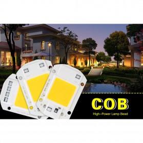 Chip Lampu COB LED Floodlight Spotlight 220V 30W - Cool White - White - 6