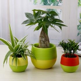 Mini Pot Bunga Hias Kaktus Tanaman - 5 PCS - Multi-Color - 3