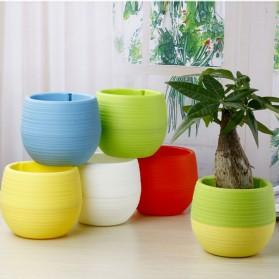 Mini Pot Bunga Hias Kaktus Tanaman - 5 PCS - Multi-Color - 4