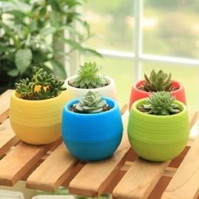 Mini Pot Bunga Hias Kaktus Tanaman - 5 PCS - Multi-Color - 6