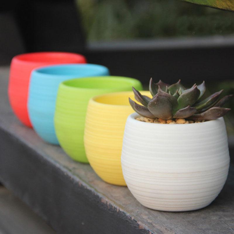 ... Mini Pot Bunga Hias Kaktus Tanaman - 5 PCS - Multi-Color - 1 ... 5e08410a75