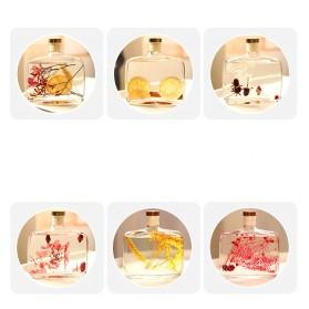 WIACHNN Fireless Parfum Ruangan Aroma Diffuser Reed Rattan Sticks Hilton 100ml - DF-200 - 2