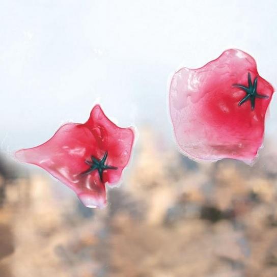 Red Squishy Ball : Squishy Anti Stress Ball Bentuk Tomat - Red - JakartaNotebook.com