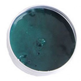 Lilin Plastisin Magnet - Green