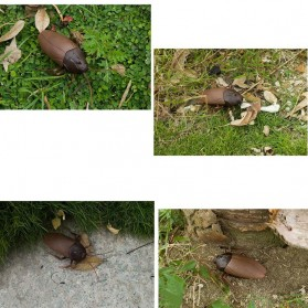 Giant Roach Mainan Prank Kecoa Dengan Remot Kontrol - H1 - 4