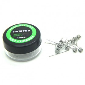 Prebuilt Coil Flat Twisted Wire 32AWG/0.20mm*2 0.9 Ohm 10PCS