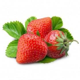 Strawberry Flavor E-Liquid 10ml Zero Nikotin