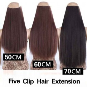 Hair Extension Wig Rambut Palsu Model Natural Straight 60cm - Brown - 4