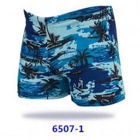 Celana Renang Pria Swimwear Beach Pants - Blue - 2