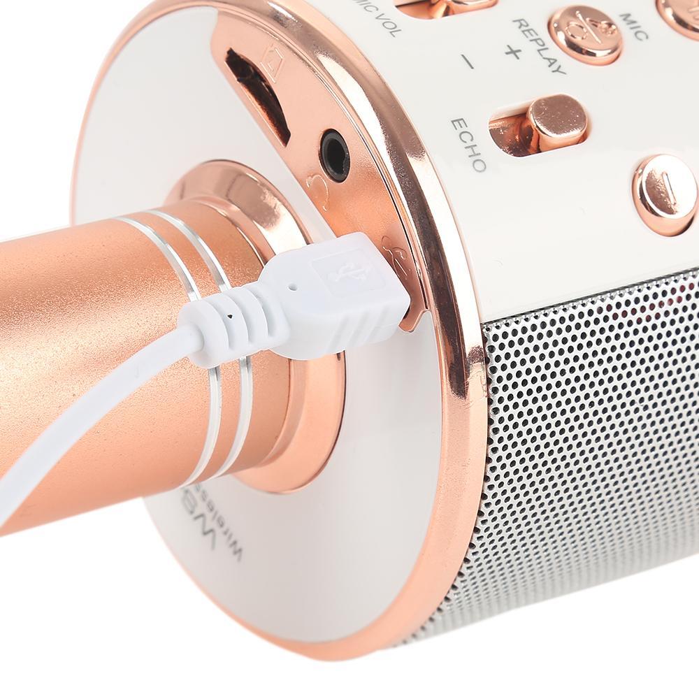 WSTER Mikrofon Speaker Wireless Portable - WS-858 - Black