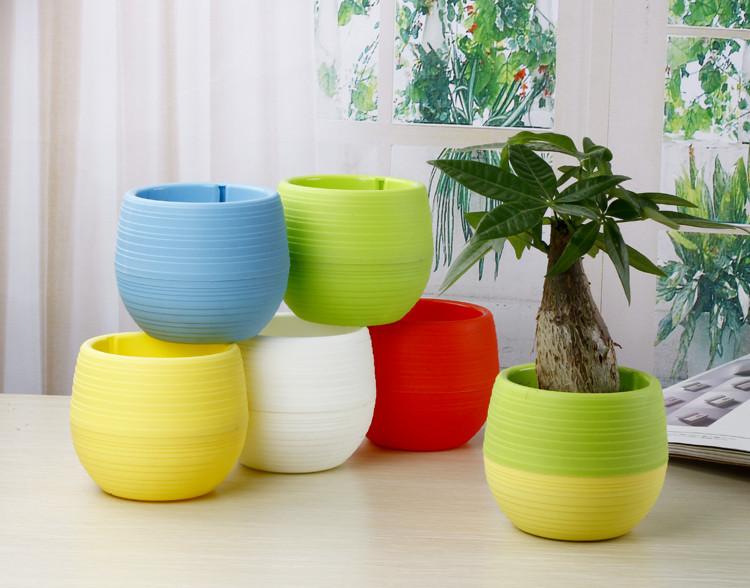 Mini Pot Bunga Hias Kaktus Tanaman - 5 PCS - Multi-Color