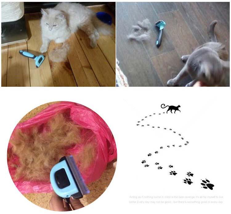 Sisir Cukur Grooming Trimmer Anjing Dan Kucing Size S Blue Jakartanotebook Com
